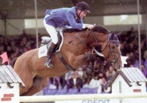 Andiamo copyright: van Olst horses